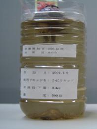 ヒヤシンス20070118